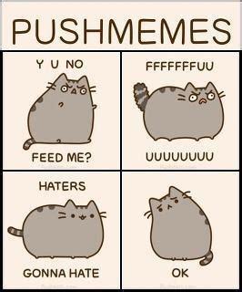 Pusheen Memes - pusheen and memes on pinterest