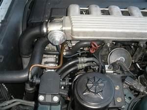 Dieseliste Pompe Injection : fuite de gazoil pompe injection les moteurs diesel forums ~ Gottalentnigeria.com Avis de Voitures