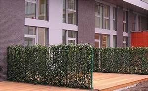 Pflanzen Für Sichtschutz : fl chen begr nen tipps von hornbach ~ Sanjose-hotels-ca.com Haus und Dekorationen