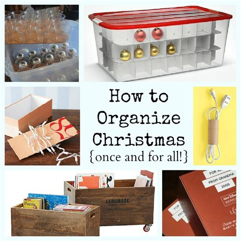 storage organization ideas lemonade