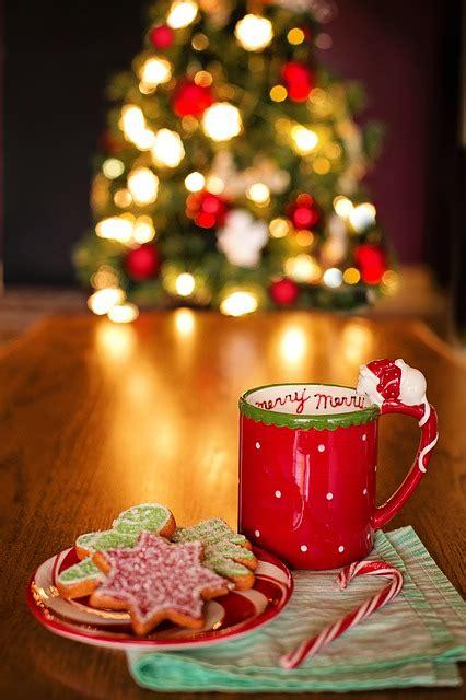 christmas  life tree hot  photo  pixabay