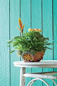 Pilea Pflanze Kaufen : indoor container garden ideas southern living ~ Michelbontemps.com Haus und Dekorationen