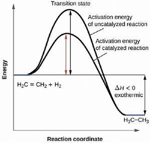 12 7  Catalysis