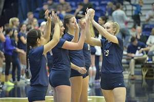 Fall sports preview: Women's volleyball - The Pitt News