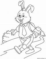 Going Rabbit Coloring Pages sketch template