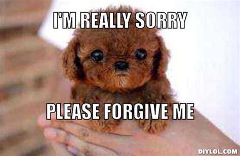 Im Sorry Memes - apologizing memes image memes at relatably com