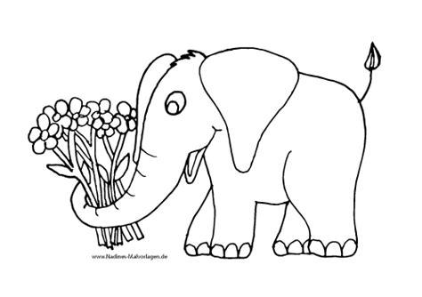 Elefant Mit Bunten Blumen
