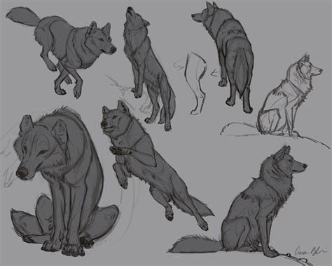 aaron blaise  twitter  wolf poses   upcoming