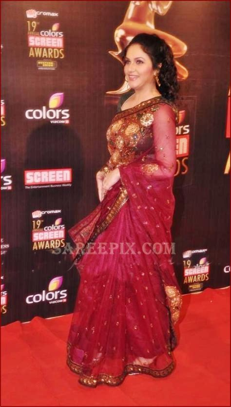 gracy singh netted saree  colors screen awards