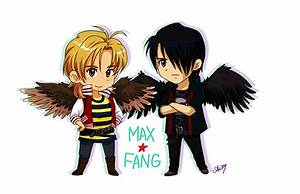 1000+ images about Maximum Ride on Pinterest