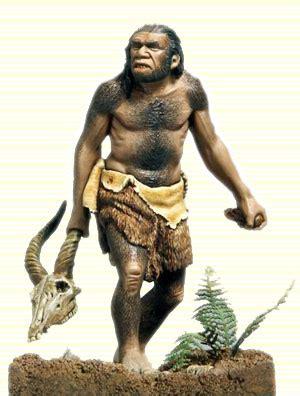 sapiens neanderthal mrs billings 6th grade social studies