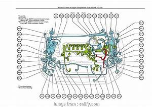 Rav4 Window Motor Diagram