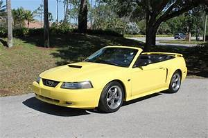 2003 Ford Mustang GT | Premier Auction