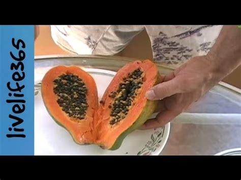 how to eat a papaya how to eat a papaya youtube