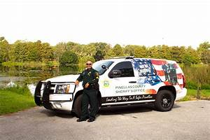 Department Of Motor Vehicles Pinellas County - impremedia.net
