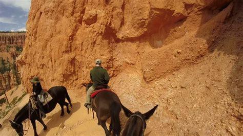 riding bryce horseback canyon national park