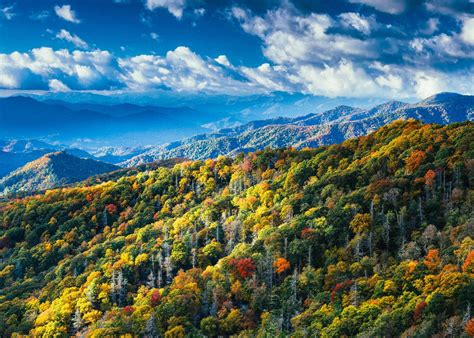 smoky mountain fall colors 8 reasons to visit gatlinburg at least once whiskey riff