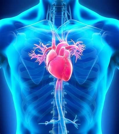 Hypertension Pulmonary Sarcoidosis Case Patient