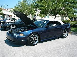2001 GT convertible | Ford Mustang Photo Gallery | Shnack.com