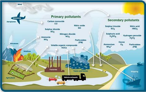 What We Can Do About Nitrogen Emissions And Air Pollution