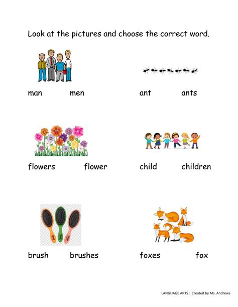 plurals   activity