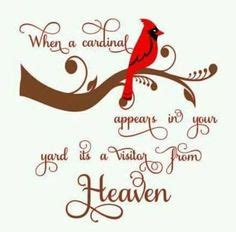 christmas svg cardinals   angels   quote