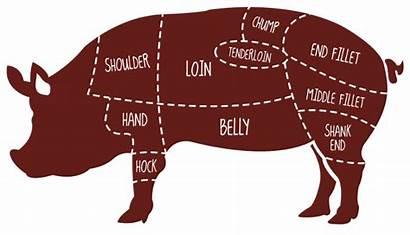Meat Lamb Clipart Pork Hog Shank Ham