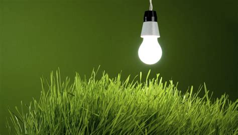Artificial Light For Plants by How Does Photosynthesis Work In Plants Sciencing