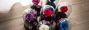Rose Eternelle Sous Cloche : la rose sous cloche le cadeau id al qui exprime votre amour ~ Farleysfitness.com Idées de Décoration