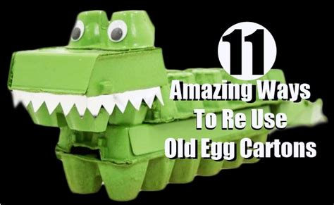 11 Amazing Ways To Reuse Old Egg Cartons  Diy Home Things
