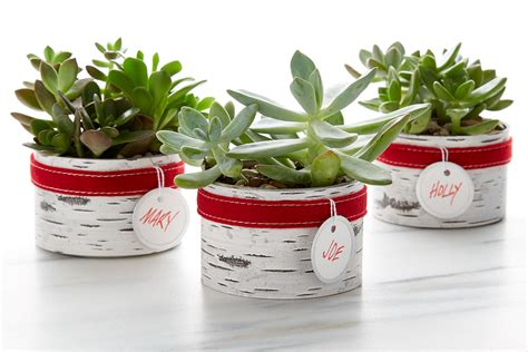 Easy Diy Homemade Holiday Gifts