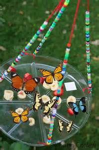 Butterfly Feeder Craft