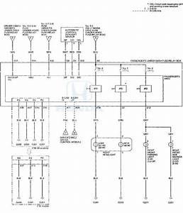 Honda Accord  Circuit Diagram - Exterior Lights