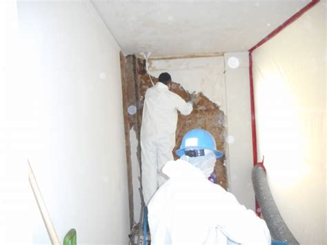 asbestos removal central valley environmental