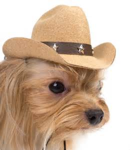 Cowboy Hats for Dogs - Light Blue