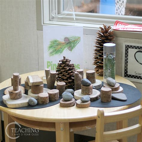 how to set up your preschool science center 648 | science pines
