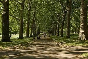 Parks In London : london 39 s best parks major parks in london time out london ~ Yasmunasinghe.com Haus und Dekorationen