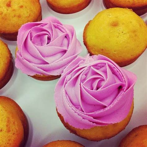 images  beginner cakes  pinterest full