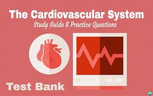 Cardiovascular System  Study Guide For Respiratory Therapy