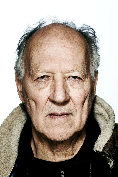 Fiberglass step ladder with 250 lb. Werner Herzog Says Independent Film Is a 'Myth'   IndieWire