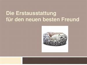 Die Besten Geschenke Für Den Freund : die erstausstattung f r den neuen besten freund ~ Sanjose-hotels-ca.com Haus und Dekorationen
