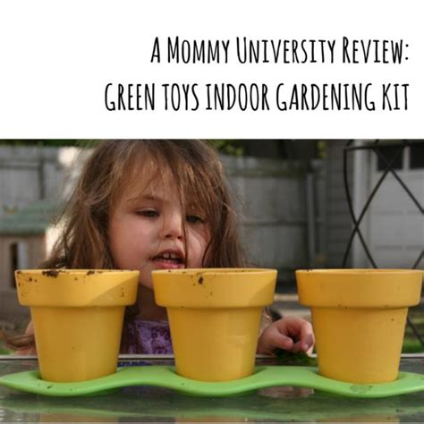 introduce your to gardening with green toys indoor