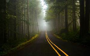 Road, Dark, Forest, Wallpapers, Hd, Desktop, And, Mobile, Backgrounds