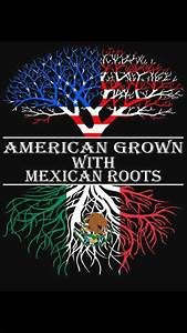 Mexican American | Quotes | Pinterest | Mexican american ...