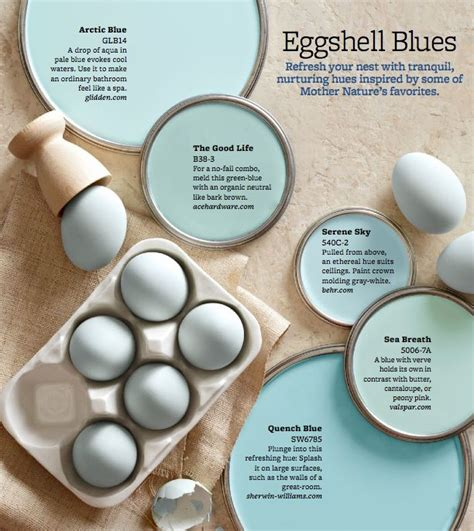25 best ideas about robin egg blue on robins