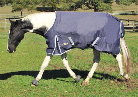 turnout horse waterproof blankets heavyweight sheets blanket 600d mcalister horseloverz coolers