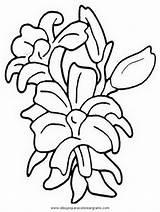 Kwiaty Kolorowanki Druku Dla Dzieci Gladioli Gladiolo Gladiolos Coloring Dibujo Disegno Flower Malowanki Flores Fiori Imprimir Forsythia Colorare Sketch sketch template