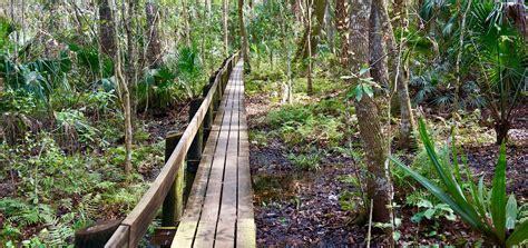 Highland Hammocks by Highlands Hammock Nature Trails Florida Hikes