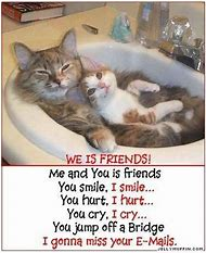 Funny I Miss You Friend Quotes