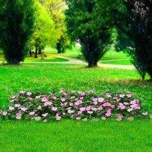 outdoor photography prop pink flower garden backdrop